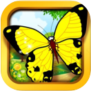 yellow butterfly educational apps icon