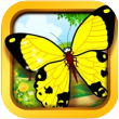 butterfly app icon small