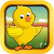 duck app icon small